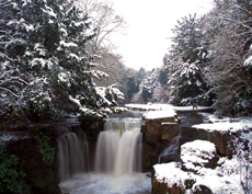 Wintry Cascade by David Whinham, a winner of this year's JCF photography competition