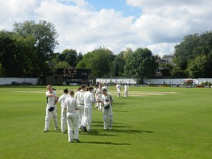 Newcastle Cricket Club players during the Bank Cup